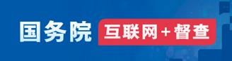互lian网+督查