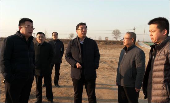 市长li明政督导调研高油酸花生产ye园项目jian设gong作